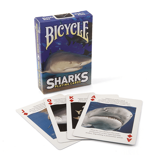 Bicycle Sharks