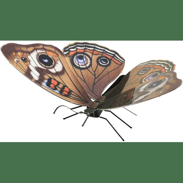 Buckeye Butterfly Metal Earth Model
