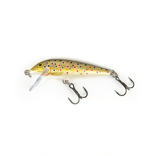 Countdown I Brown Trout