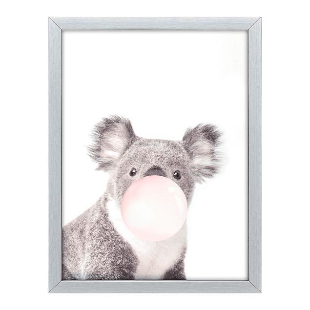 Cuadro Tela 30 X 40 Koala