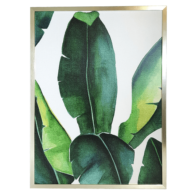 Cuadro Tela 40 x 60 Botánico Hoja Grande