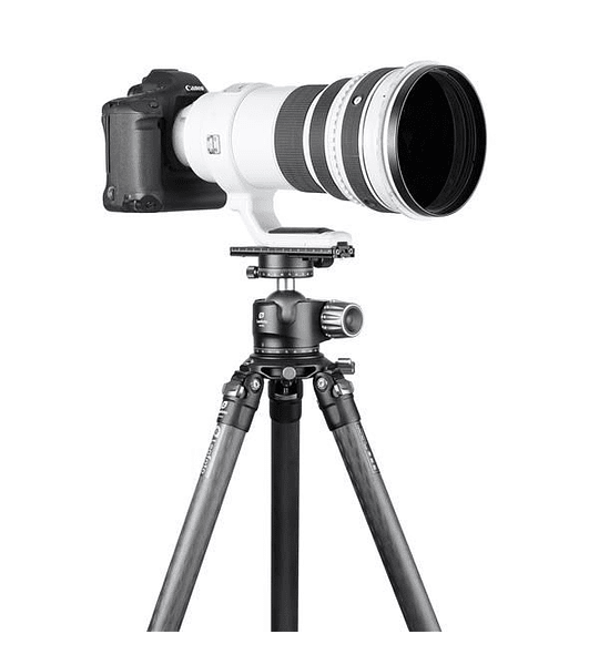 Galleta/Zapata tipo Arca PL-150