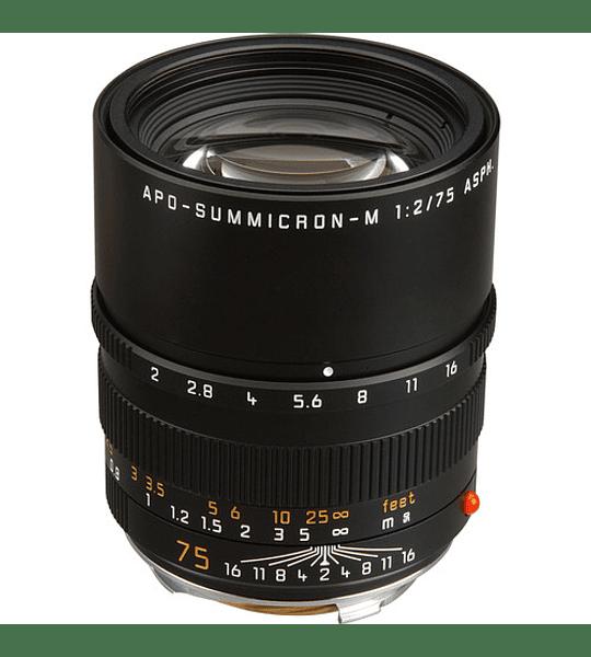 Leica APO-Summicron-M 75mm f/2 ASPH. (Black o Silver)