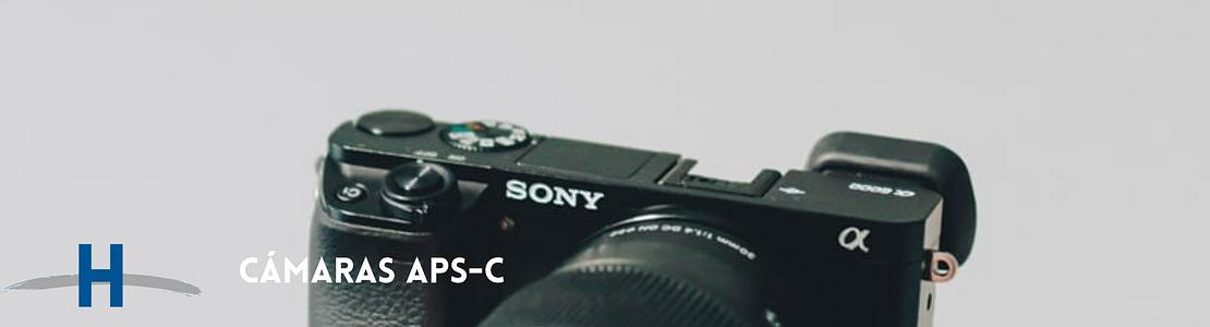 Cámaras Sony APS-C