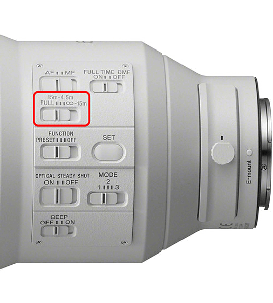 Sony GM 600mm f4  OSS FE
