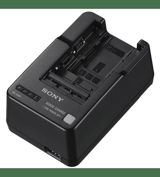 Cargador de batería Compatible con series W / V / M / H / P