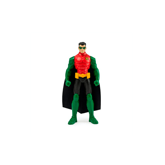 Robin / 6