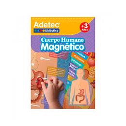 Láminas Magnéticas / Cuerpo Humano