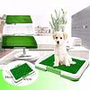 Baño ecológico para Mascotas