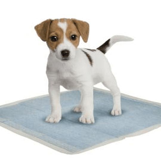 Pañales Sabanillas Para Mascota 60 X 90 Cms Absorventes