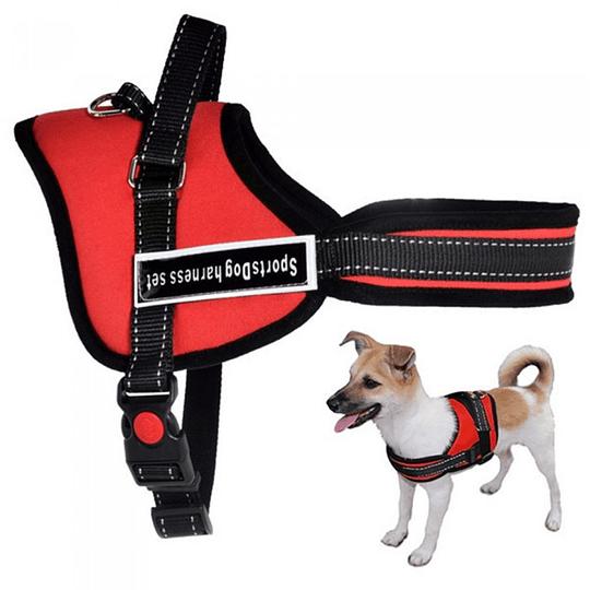 Arnes Para Perros Paseos Entrenamiento