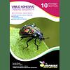 Vinilo Tornasol Adhesivo Holografico Efecto Estrella  A4/10 hojas
