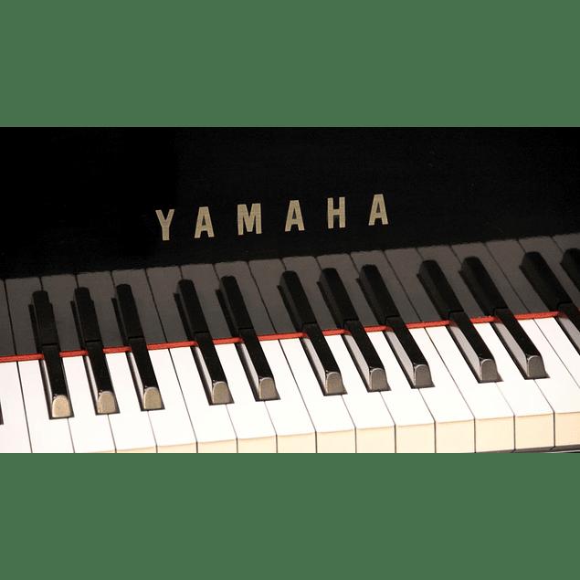 YAMAHA GB1K PE BABY GRAND PIANO PIANO DE COLA