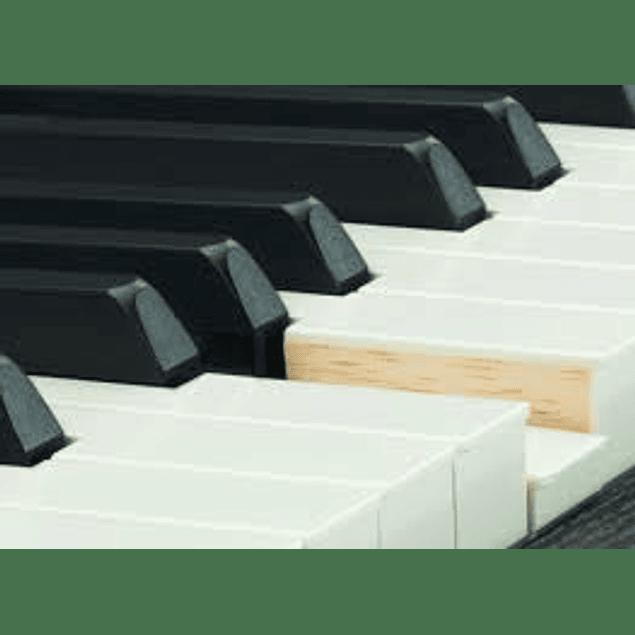 YAMAHA CSP170B CLAVINOVA SMART PIANO DIGITAL