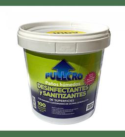 Paños húmedos desinfectantes y sanitizantes 100 toallitas (11x23 cm)
