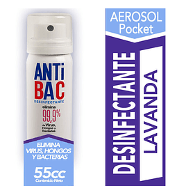 Desinfectante Aerosol Anti Bac 55 cc Tanax