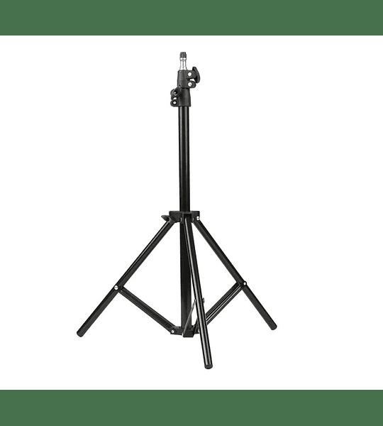Termómetro de pared o trípode Infrarrojo sin contacto