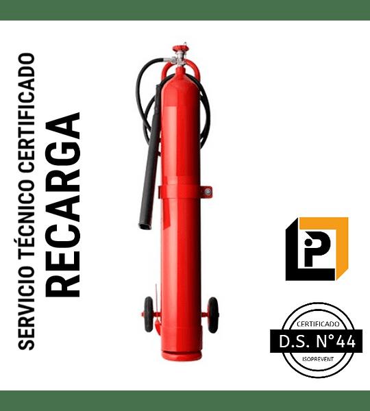 Recarga Extintor 10 Kilos CO2, RC10