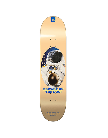 Life Space dog 8.125