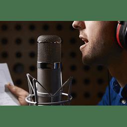 Jad Mehanna - Voice over fee 300$ (Phone design -burger king)