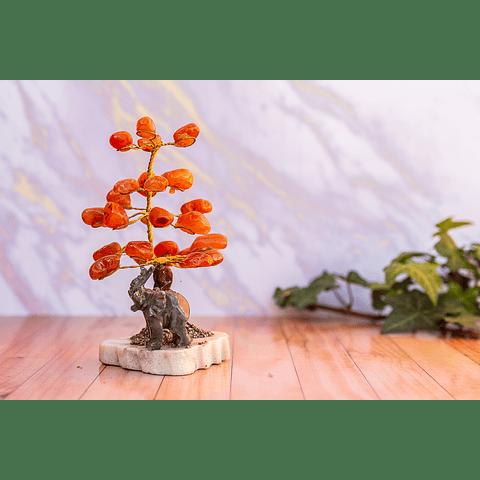 Árbol de Ágata Cornalina