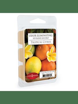 Cera Aromática Tropical Citrus 70.9 g