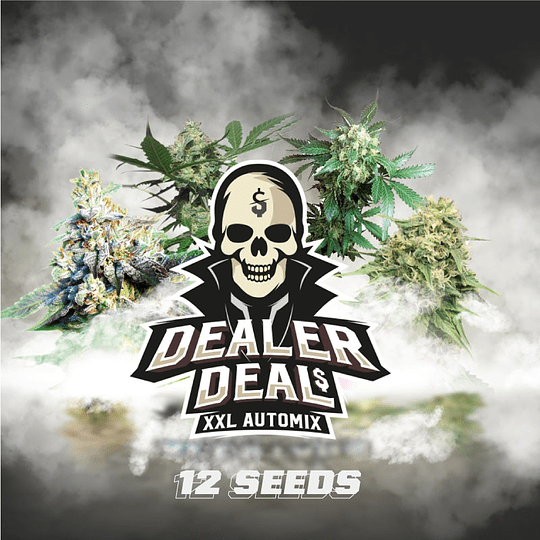 Dealer Deal XXL Automix x12  BSF SEEDS