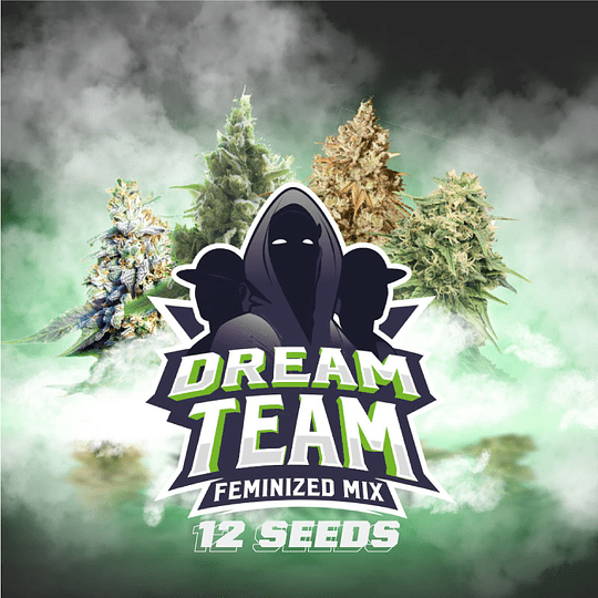 Dream Team Feminized Mix x12 BSF SEEDS