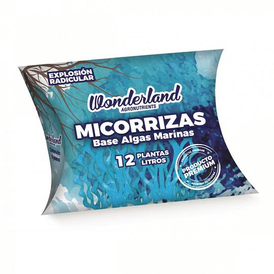 Micorrizas  6 gramos Wonderland