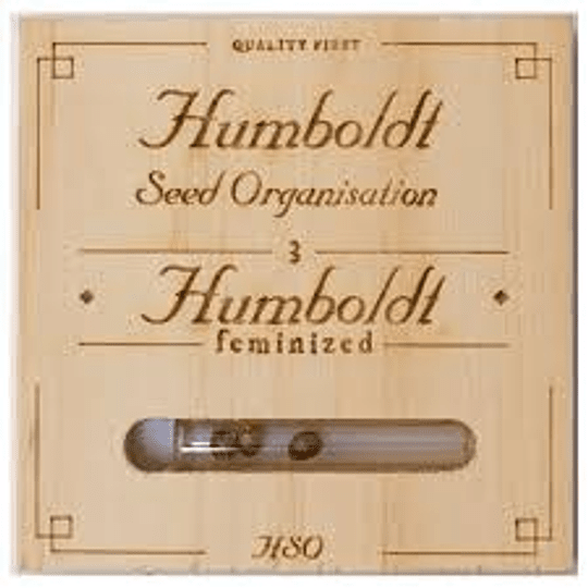 Gorilla Breath x3 Humboldt Seeds