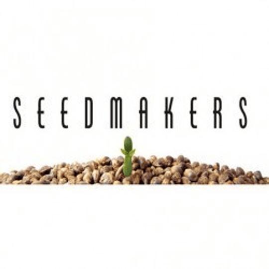 Super Kush x5 Fem Seeds Makers