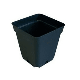maceta cuadrada 1 L  11x11x12