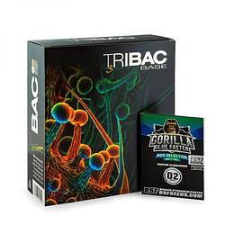 Promo Tribac Bac + Promo Semillas BSF (Orange Blossom)