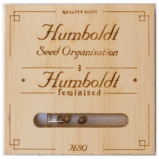 Loast Coast Skunk Auto x3 Humboldt Seeds