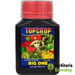 Big One 250ml Top Crop