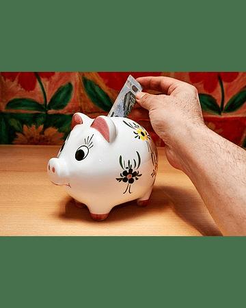 Planilla de Control de Gastos e Informes por Periodo