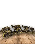 Fila Elefantes Dorado 11cm Pack de 2