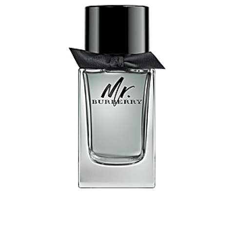 Burberry  MR BURBERRY edt vapo 100 ml