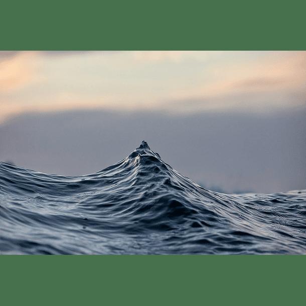 Light & water behaviour