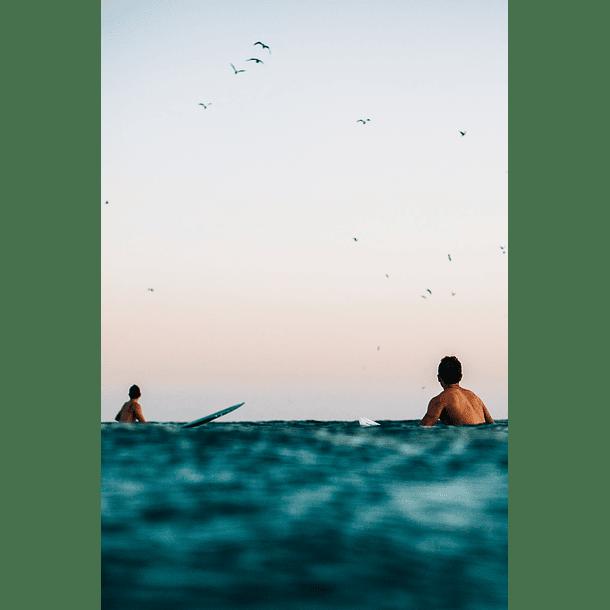 Virtudes del Surf
