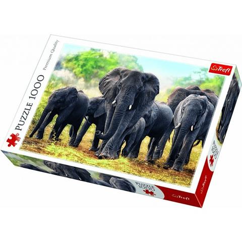 Elefantes africanos - 1000 piezas
