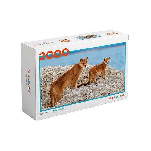 Puma - 2000 Piezas
