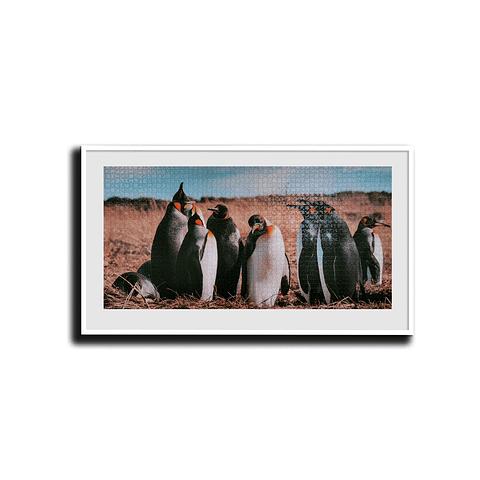 Pinguino Rey - 2000 Piezas