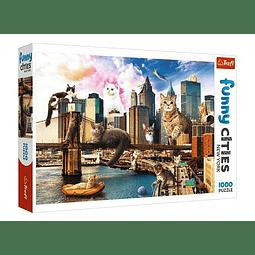 """""""Funny Cities"""": Catos en Nueva York"""