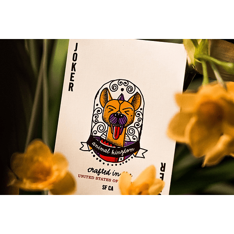 Animal Kingdom - Theory11