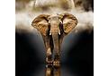 Puzzle 1000 Piezas - Elefante