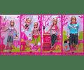 Barbie Skipper Colección de Lujo Año 2008