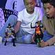 Robin DC Comics Figura con 11 puntos de Articulación