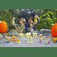 Dino Egg Huevo Gigante Smashers Zuru Collectibles Serie 3