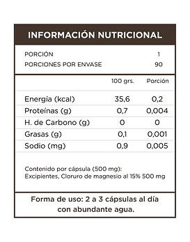 Cloruro de Magnesio  90 Cápsulas  500 Mg